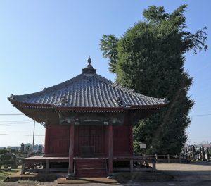 浄蔵寺の大イチョウ